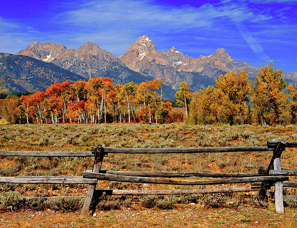 A Moment In Wyoming In Autumn Print by Jeff R Clow