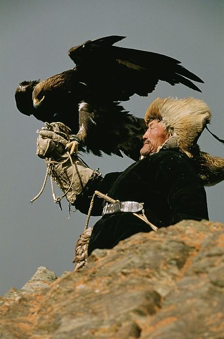 A Mongolian Print by David Edwards