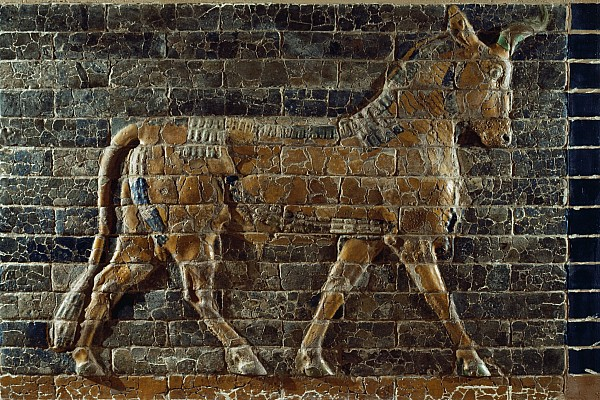 A Relief Depicts A Bull Print by Lynn Abercrombie