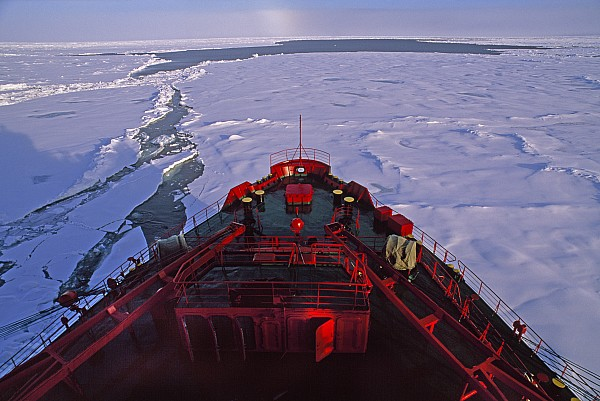 A Russian Nuclear Icebreaker, Forges Print by Gordon Wiltsie