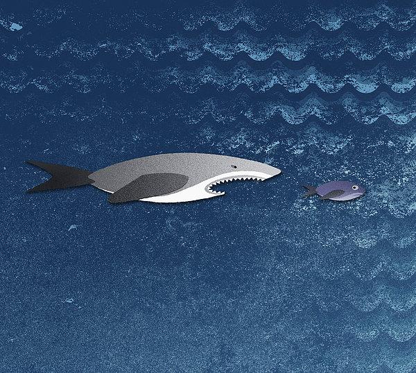 A Shark Chasing A Smaller Fish Print by Jutta Kuss