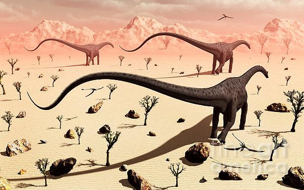 A Small Group Of Diplodocus Sauropod Print by Mark Stevenson