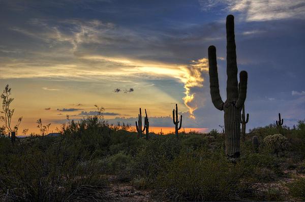 Saija  Lehtonen - A Southwestern Sunset