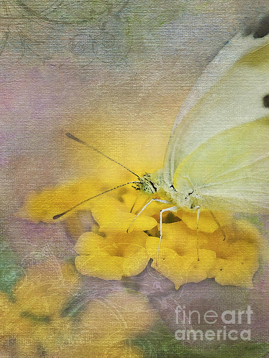 A Touch Of Yellow Print by Betty LaRue