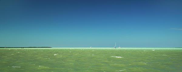 A Windy Day On The Bay Islamorada Florida Print by Michelle Wiarda