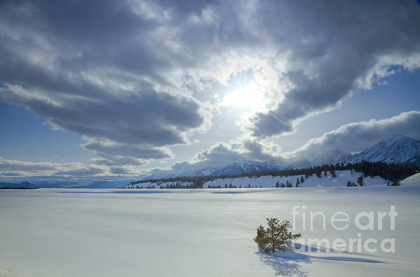 A Winter Sky Print by Idaho Scenic Images Linda Lantzy