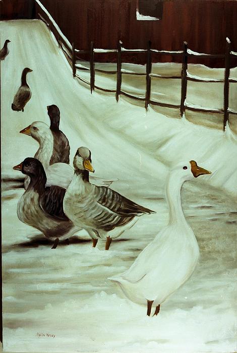 A Winter's Walk Print by Sheila Kinsey