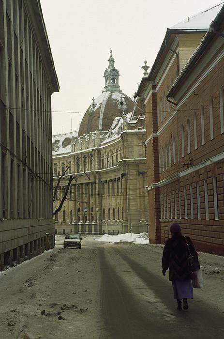 A Woman Walks Down A Snowy  Street Print by Gordon Wiltsie