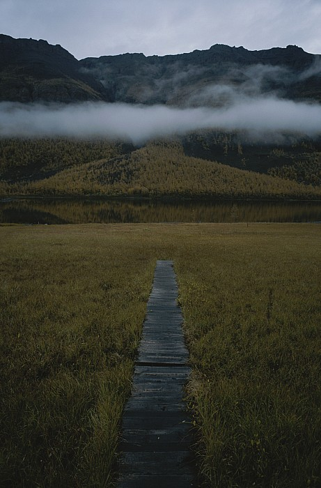 A Wooden Pathway Leads To An Print by Randy Olson
