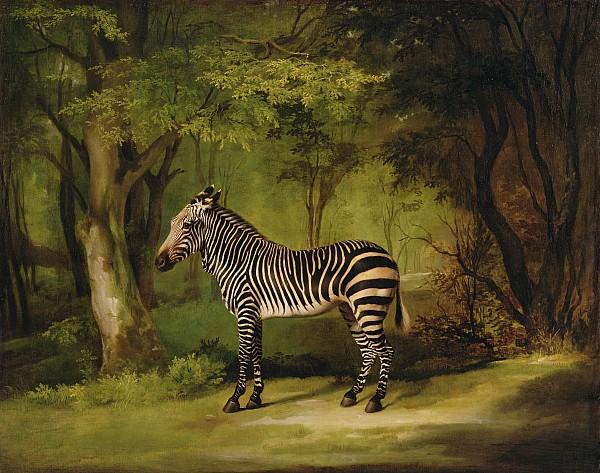 A Zebra Print by George Stubbs