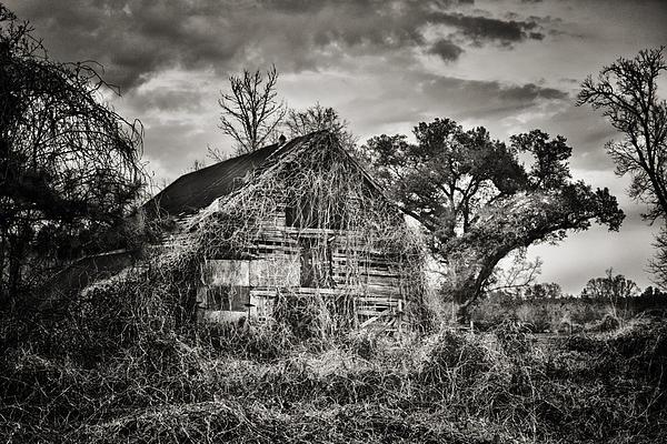 Abandoned Barn 2 Print by Brenda Bryant