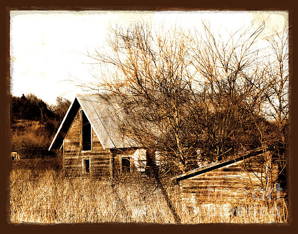 Abandoned Barn  Print by Ann Powell