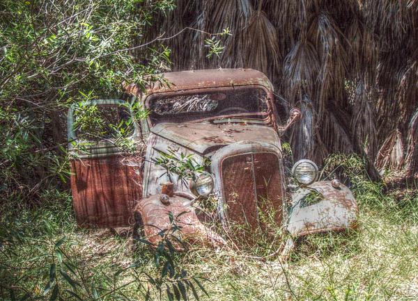 Cindy Nunn - Abandoned