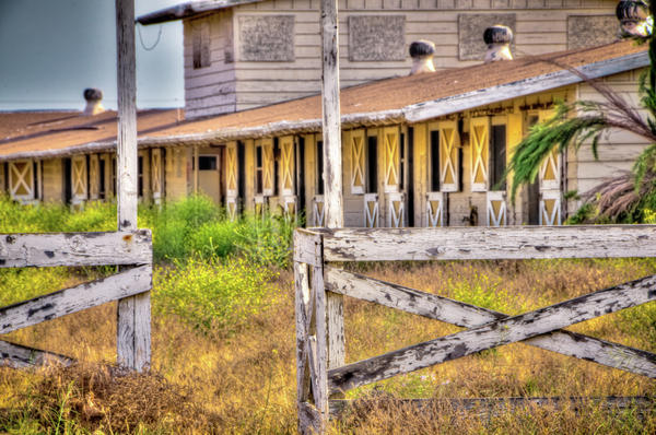 Abandoned Horse Stables Print by Connie Cooper-Edwards