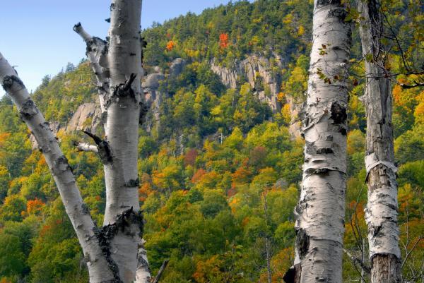 David Lee Thompson - Adirondack Mountains New York
