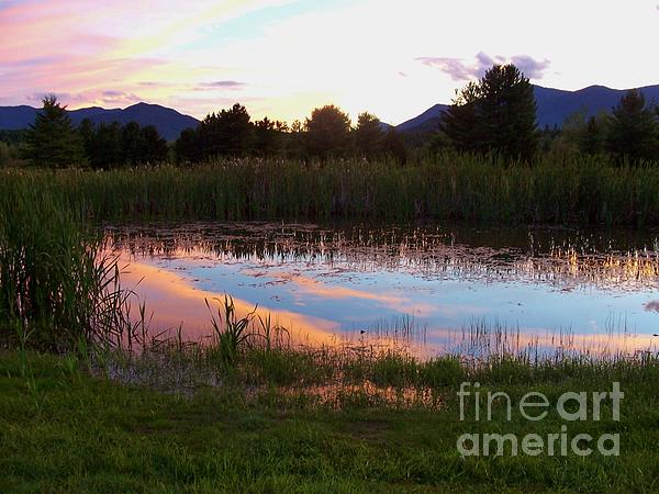 Adirondack Reflection 1 Print by Peggy Miller