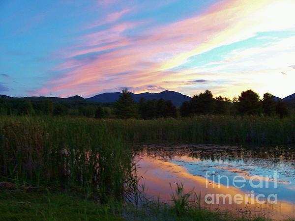 Adirondack Reflections 2 Print by Peggy Miller
