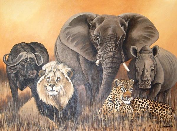 African Big 5 Nellie Visser Jpg