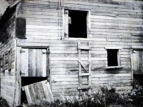Aging Barn Print by Julie Hamilton