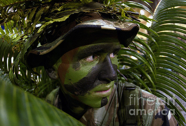 Airman Conceals Himself By Blending Print by Stocktrek Images