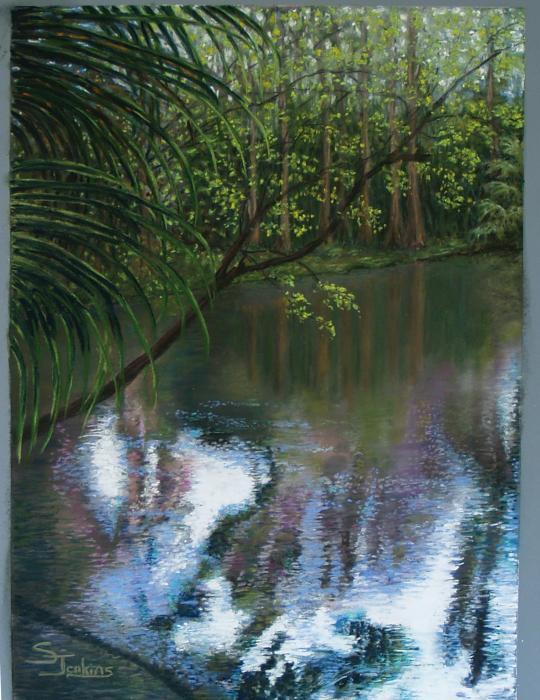 Alafia River Reflection Print by Susan Jenkins