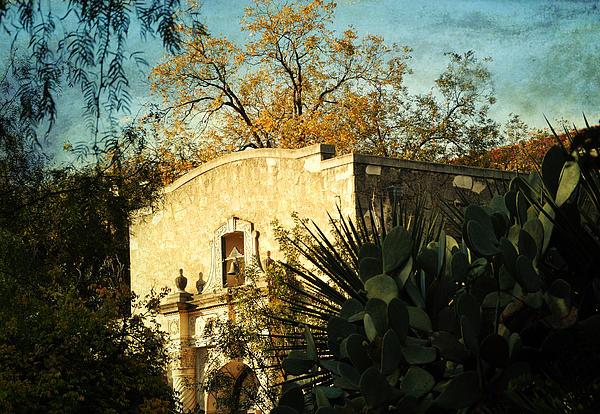 Alamo Mission Print by Iris Greenwell