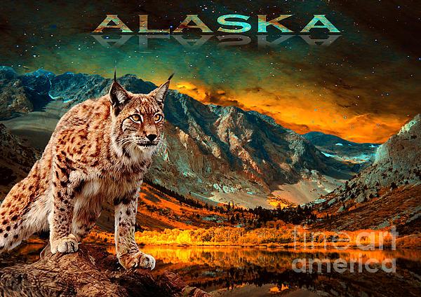 Stanislav Jenco - Alaska Lynx
