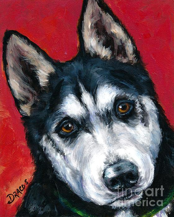 Alaskan Malamute Portrait On Red Print by Dottie Dracos