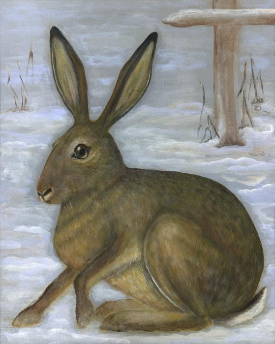 Albert The Hare Print by Anna Folkartanna Maciejewska-Dyba