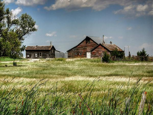 Susan Schwarting - Along the Rural Road