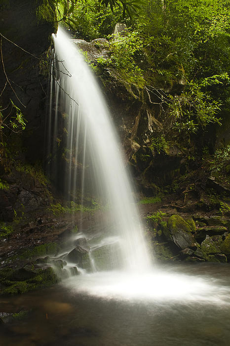 Alongside Grotto Falls Print by Andrew Soundarajan