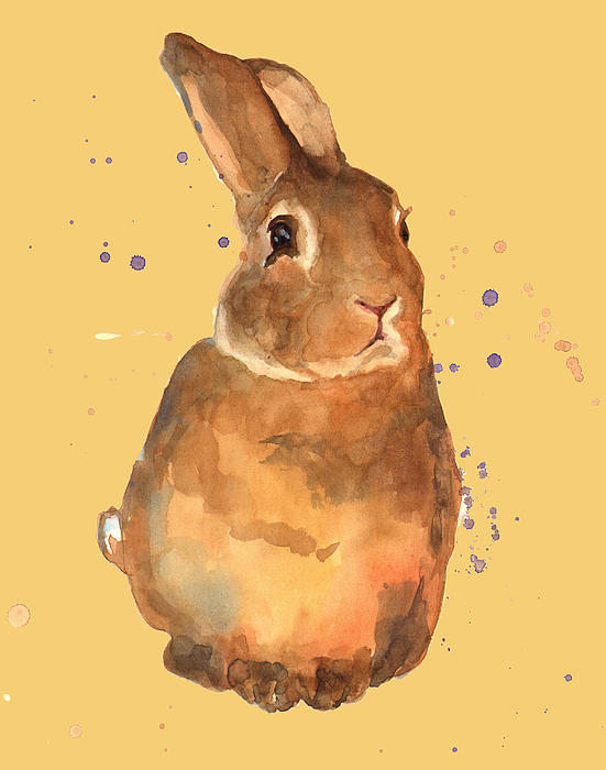 Alison Fennell - Amber Bunny