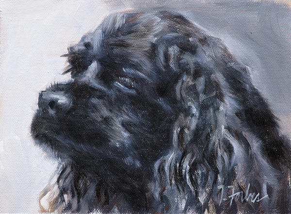American Cocker Spaniel Print by Isabel Forbes