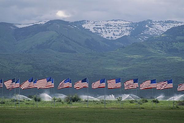 American Flags Honoring Veterans Print by James P. Blair