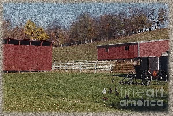 Charles Robinson - Amish Farm