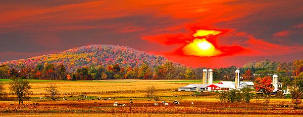 Amish Farm Sundown Print by Randall Branham