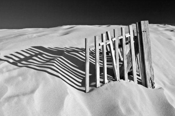 John McKinlay - Amoreira Shadows