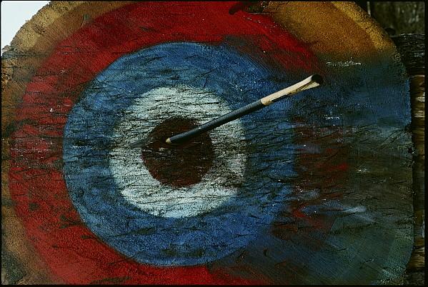 An Arrow Hit The Bullseye Print by Sam Abell