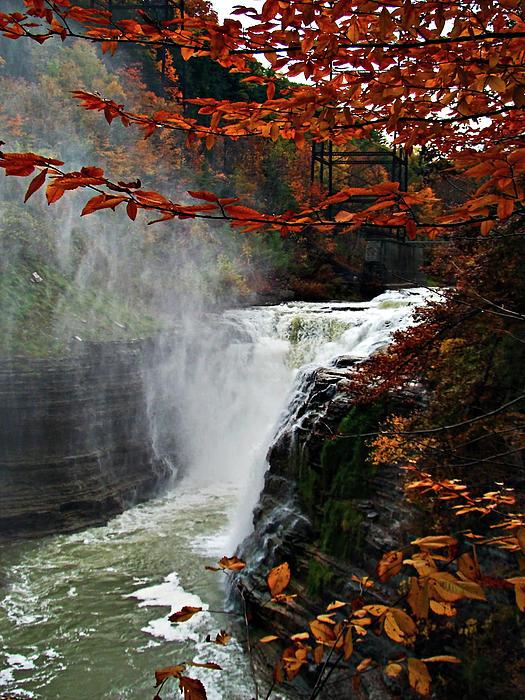 Lianne Schneider - An Upper Letchworth Autumn