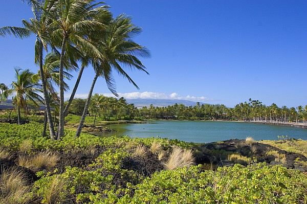 Anaehoomalu Bay Print by Ron Dahlquist - Printscapes