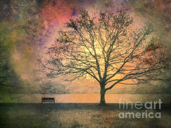 And The Morning Is Perfect In All Her Measured Wrinkles Print by Tara Turner