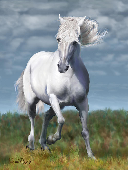 Andalusian Freedom Print by Suni Roveto
