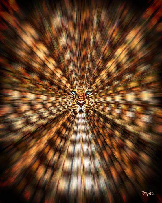Paula Ayers - Animal Magnetism