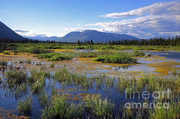 Annie Lake In Yukon Print by Charline Xia