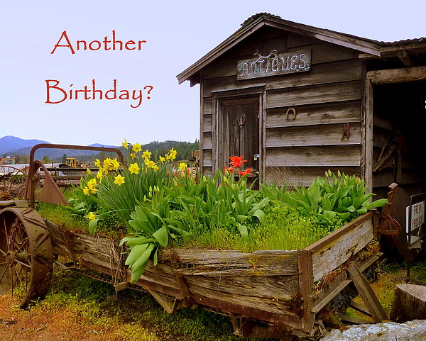Another Birthday Antiques Print by Cindy Wright