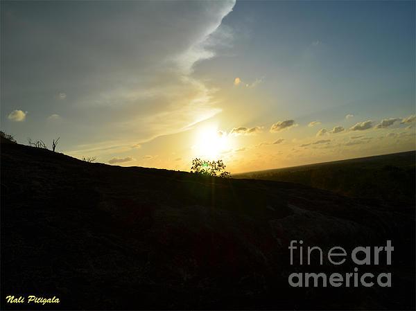 Nalini Pitigala - Another Capture  Of Sunset.