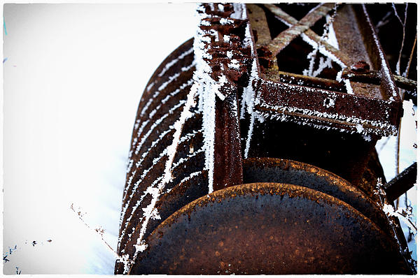 Another Winter Print by Jarrod Erbe
