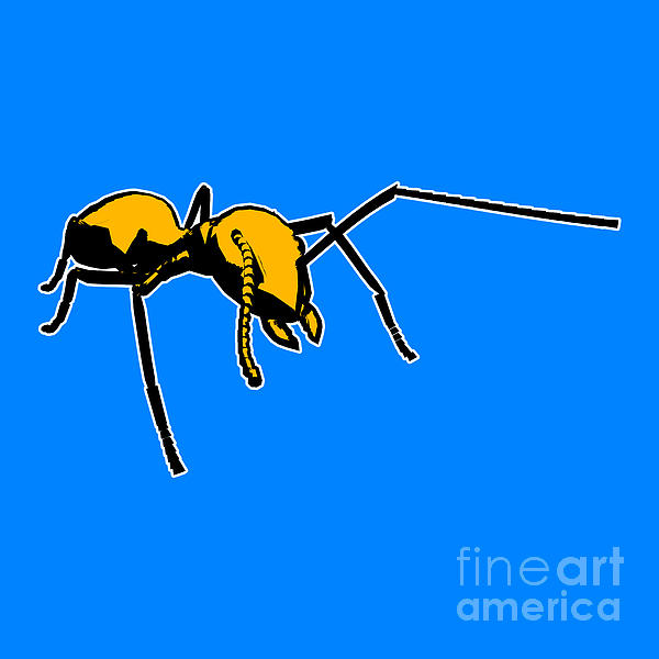 Ant Graphic  Print by Pixel  Chimp