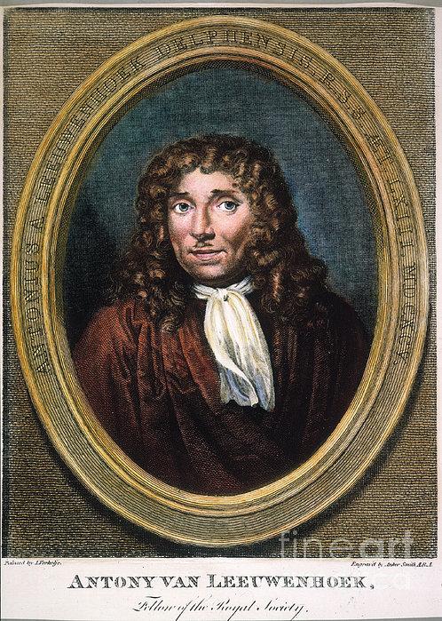 Anton Van Leeuwenhoek Print by Granger