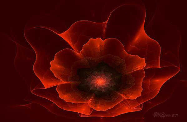 Apo Oriental Poppy Print by Peggi Wolfe